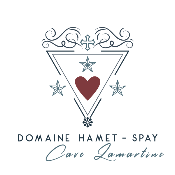 logo-hamet-spay-couleur