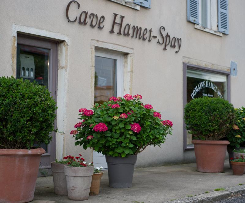 boutique-hamet-spay-saint-amour-vitrine